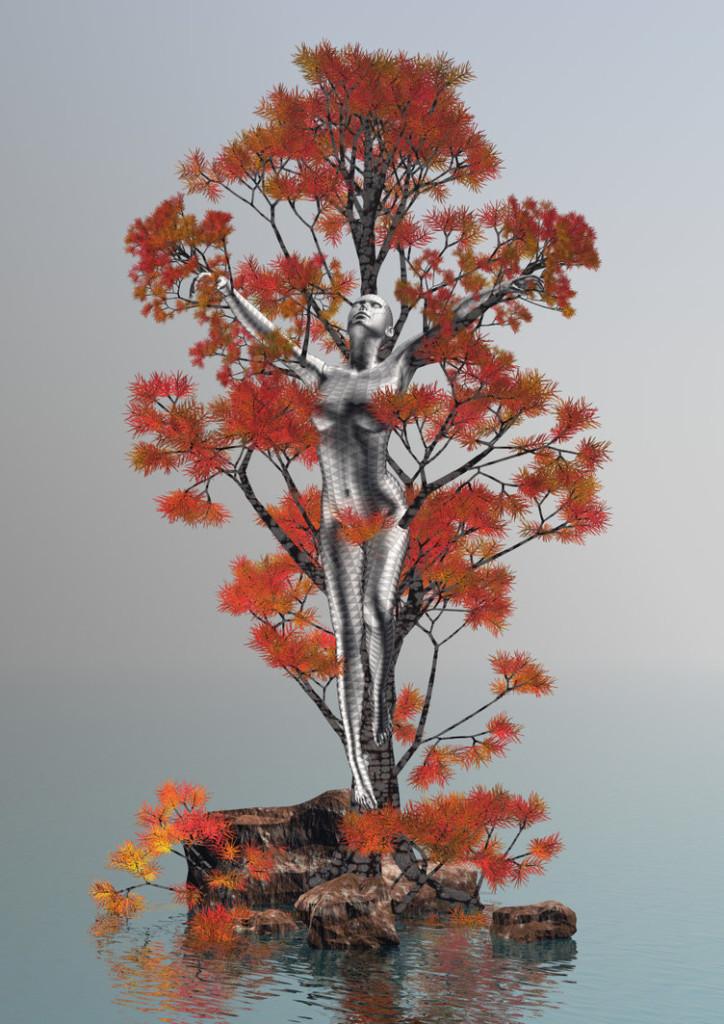 The Shewood Tree