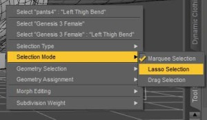 Using the marquee selection with the geometry editor in DAZ Studio